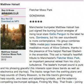 Matthew Halsall: Fletcher Moss Park - Guardian Review