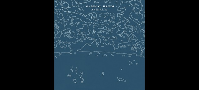 GONDCD011 - Mammal Hands release their debut album 'Animalia' on Gondwana Records!!