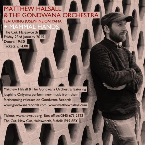 Matthew Halsall & The Gondwana Orchestra + Mammal Hands live at The Cut in Halesworth, Suffolk